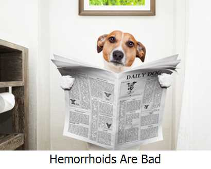Hemorrhoids Are Bad